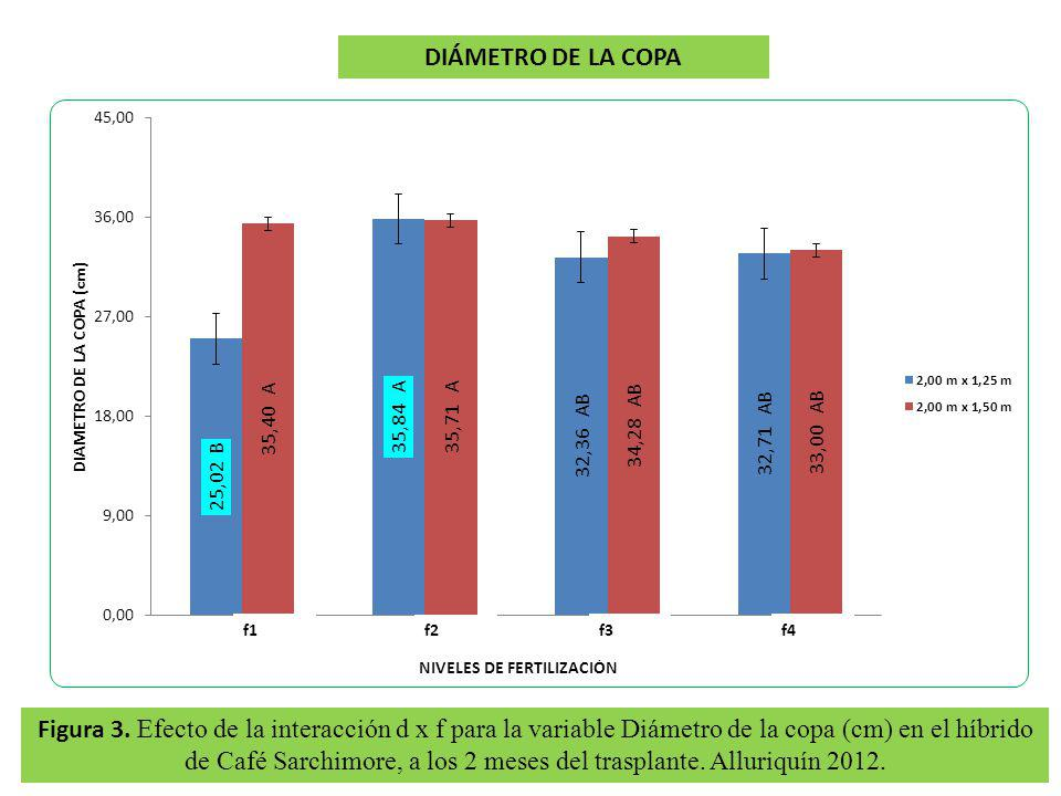 DIÁMETRO DE LA COPA f1. f2. f3. f4.