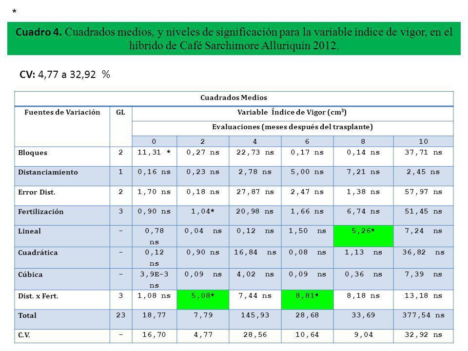 * Cuadro 4. Cuadrados medios, y niveles de significación para la variable índice de vigor, en el híbrido de Café Sarchimore Alluriquín 2012.