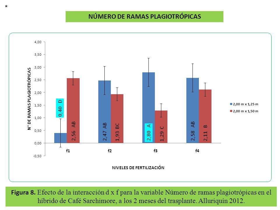 NÚMERO DE RAMAS PLAGIOTRÓPICAS