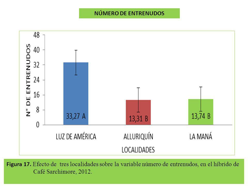 NÚMERO DE ENTRENUDOS Figura 17.