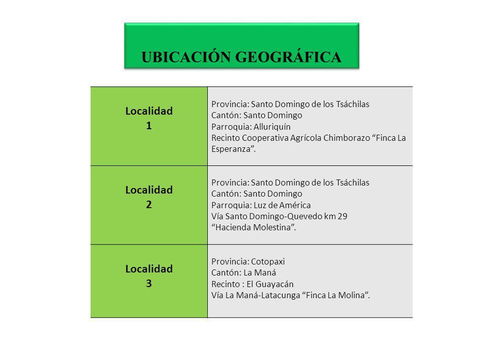 UBICACIÓN GEOGRÁFICA Localidad 1 2 3