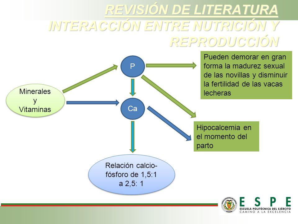 REVISIÓN DE LITERATURA INTERACCIÓN ENTRE NUTRICIÓN Y REPRODUCCIÓN