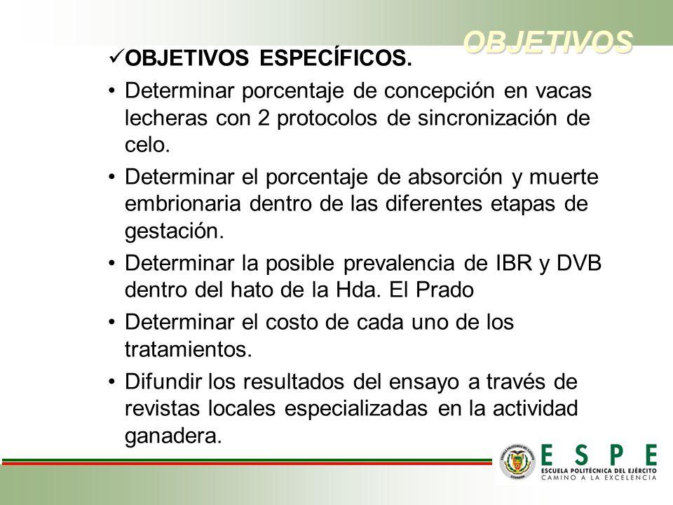 OBJETIVOS OBJETIVOS ESPECÍFICOS.