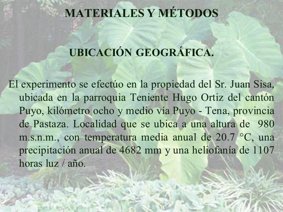 MATERIALES Y MÉTODOS UBICACIÓN GEOGRÁFICA.