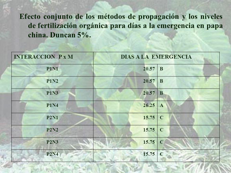 Efecto conjunto de los métodos de propagación y los niveles de fertilización orgánica para días a la emergencia en papa china. Duncan 5%.
