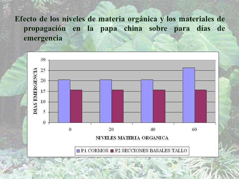 Efecto de los niveles de materia orgánica y los materiales de propagación en la papa china sobre para días de emergencia