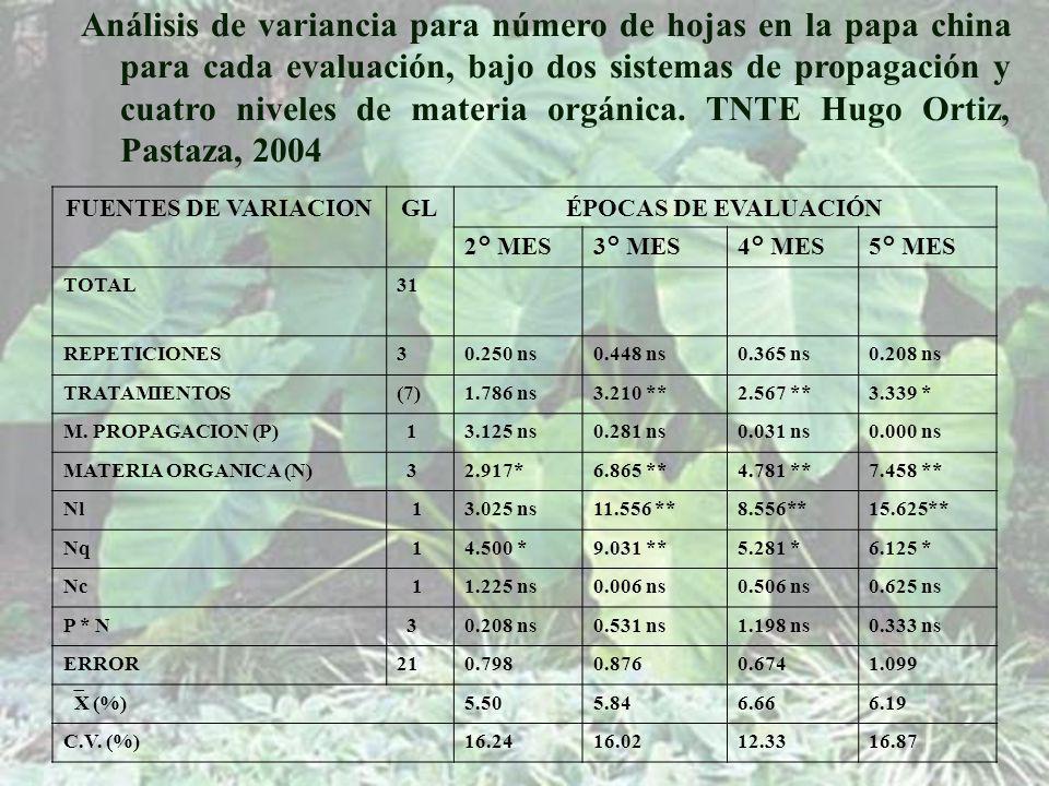 Análisis de variancia para número de hojas en la papa china para cada evaluación, bajo dos sistemas de propagación y cuatro niveles de materia orgánica. TNTE Hugo Ortiz, Pastaza, 2004