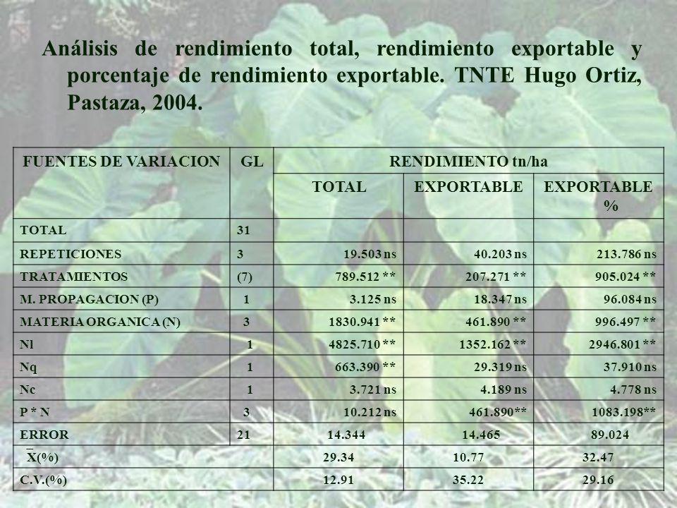 Análisis de rendimiento total, rendimiento exportable y porcentaje de rendimiento exportable. TNTE Hugo Ortiz, Pastaza, 2004.