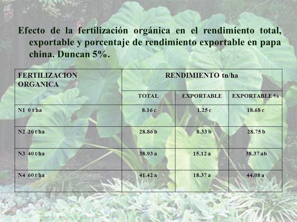 Efecto de la fertilización orgánica en el rendimiento total, exportable y porcentaje de rendimiento exportable en papa china. Duncan 5%.