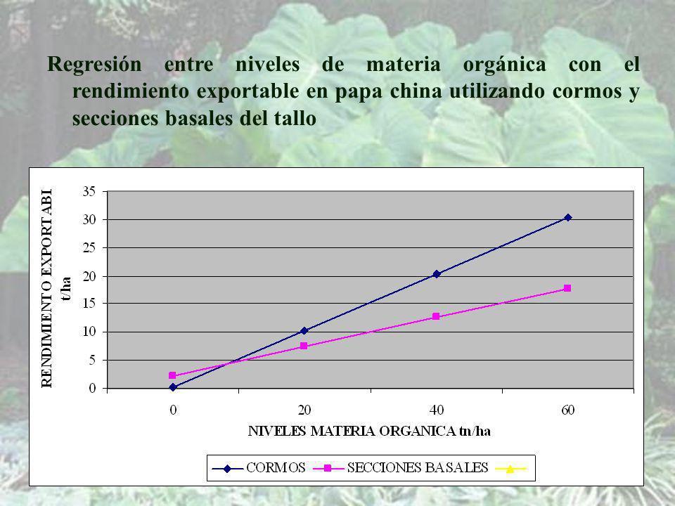 Regresión entre niveles de materia orgánica con el rendimiento exportable en papa china utilizando cormos y secciones basales del tallo