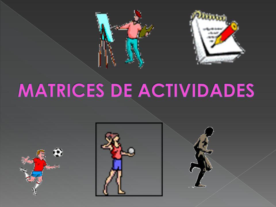 MATRICES DE ACTIVIDADES