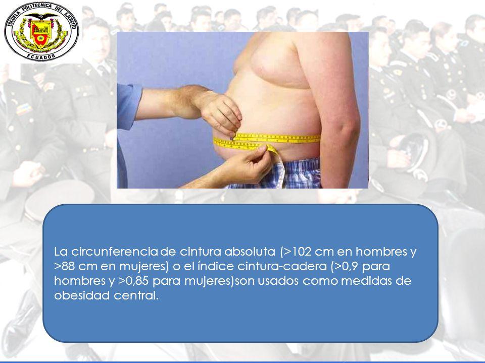 La circunferencia de cintura absoluta (>102 cm en hombres y >88 cm en mujeres) o el índice cintura-cadera (>0,9 para hombres y >0,85 para mujeres)son usados como medidas de obesidad central.