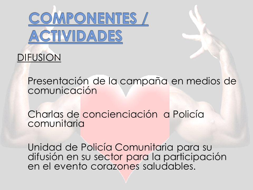COMPONENTES / ACTIVIDADES