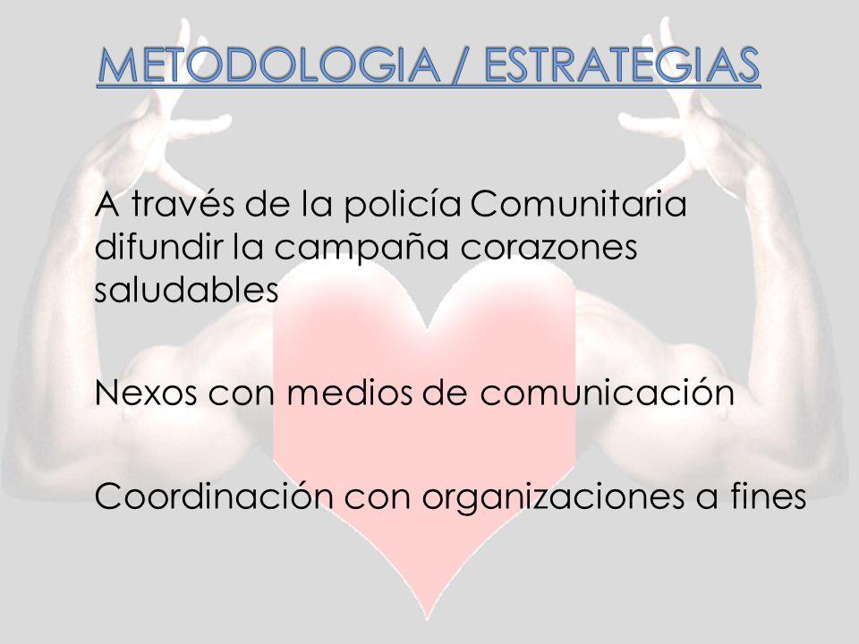 METODOLOGIA / ESTRATEGIAS