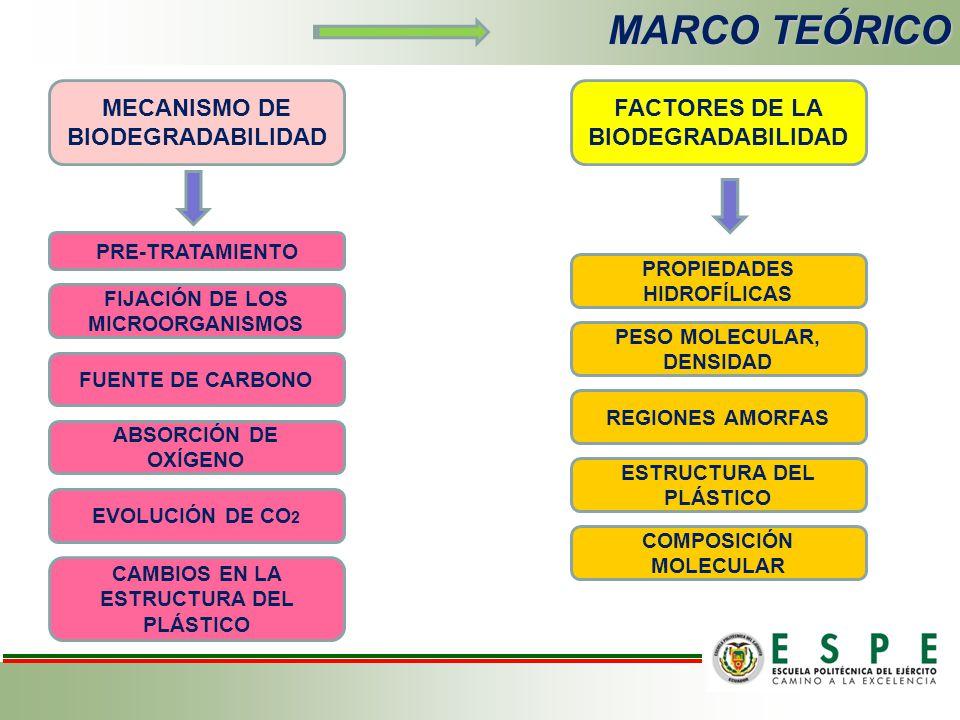 MARCO TEÓRICO MECANISMO DE BIODEGRADABILIDAD