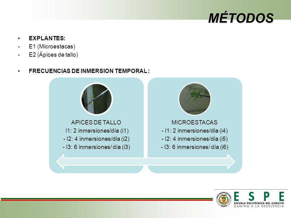 MÉTODOS EXPLANTES: E1 (Microestacas) E2 (Ápices de tallo)