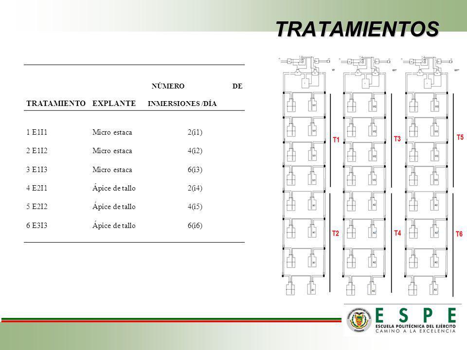 TRATAMIENTOS TRATAMIENTO EXPLANTE NÚMERO DE INMERSIONES /DÍA 1 E1I1