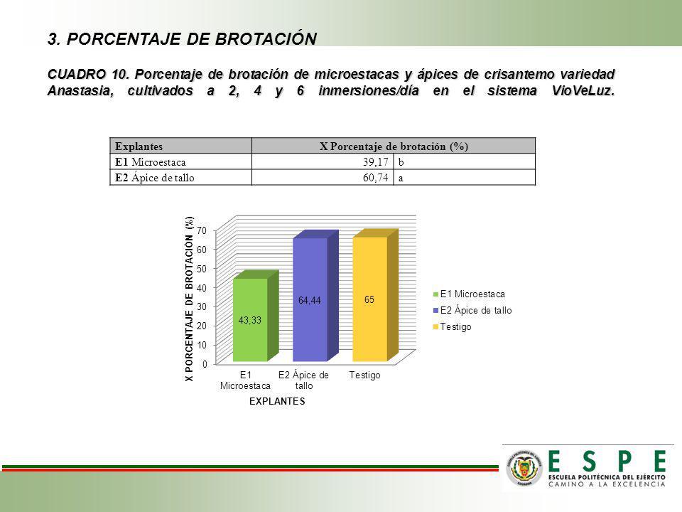 X Porcentaje de brotación (%)