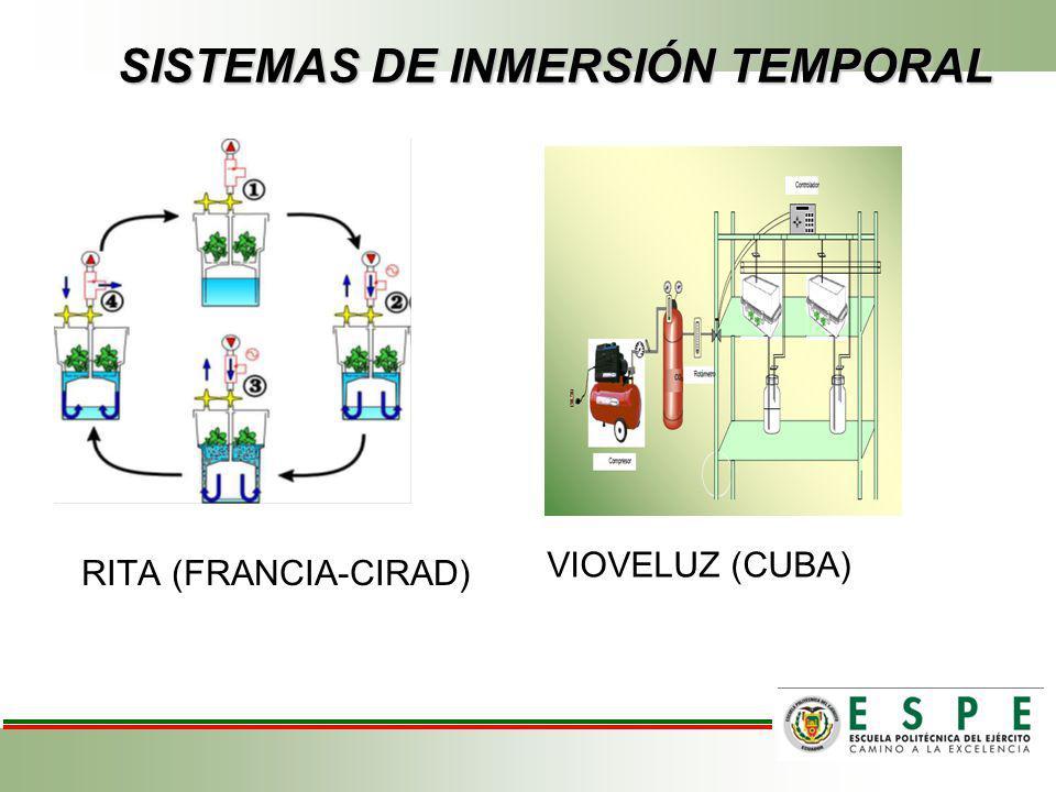 SISTEMAS DE INMERSIÓN TEMPORAL