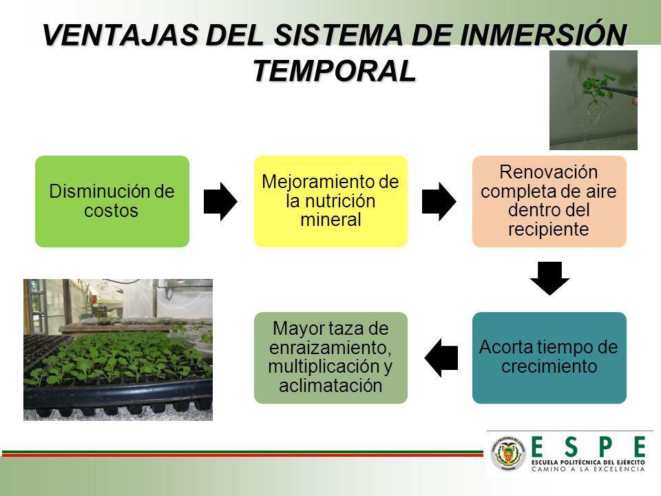VENTAJAS DEL SISTEMA DE INMERSIÓN TEMPORAL
