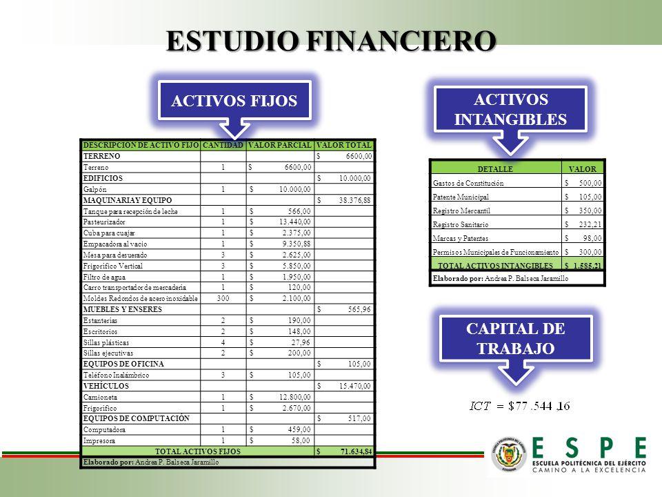 DESCRIPCIÓN DE ACTIVO FIJO TOTAL ACTIVOS INTANGIBLES