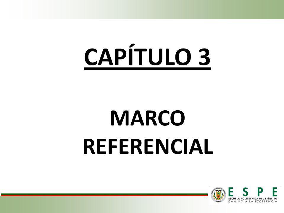 CAPÍTULO 3 MARCO REFERENCIAL