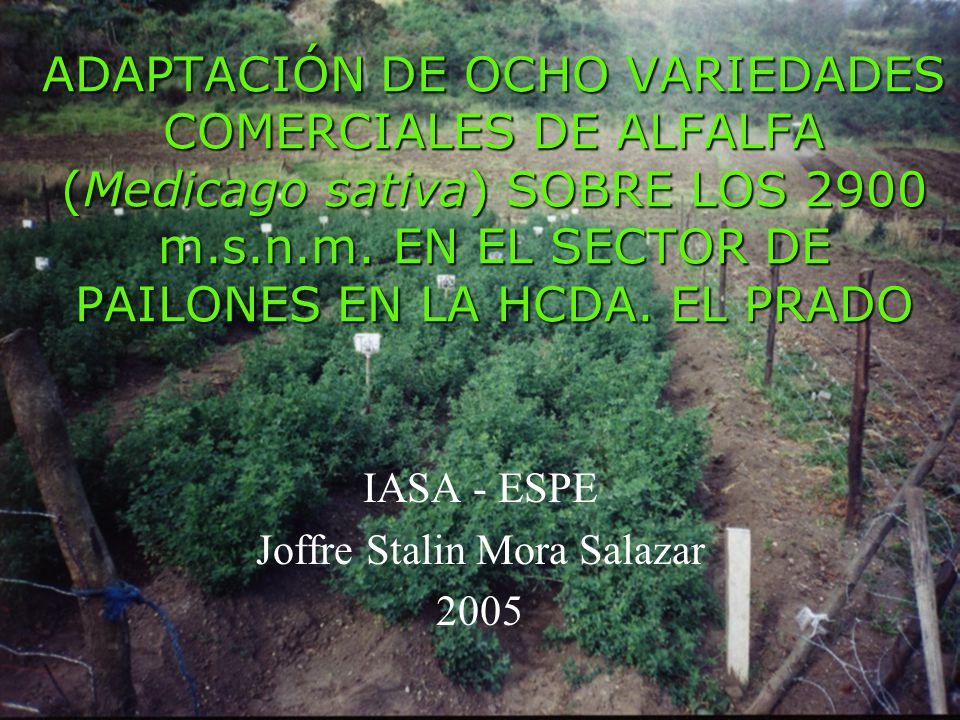 IASA - ESPE Joffre Stalin Mora Salazar 2005