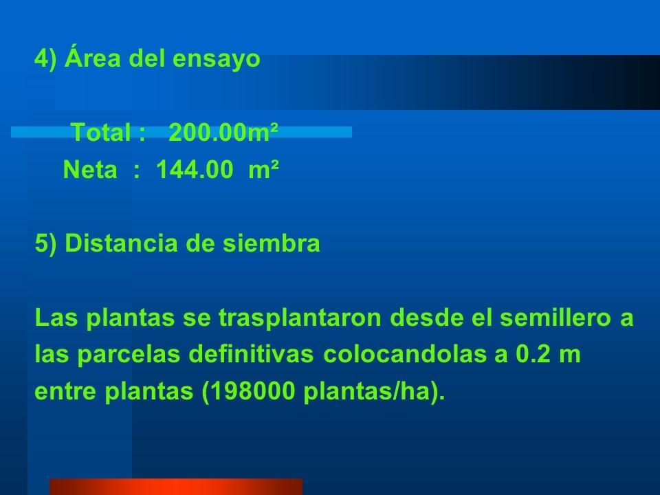 4) Área del ensayo Total : 200.00m². Neta : 144.00 m². 5) Distancia de siembra. Las plantas se trasplantaron desde el semillero a.