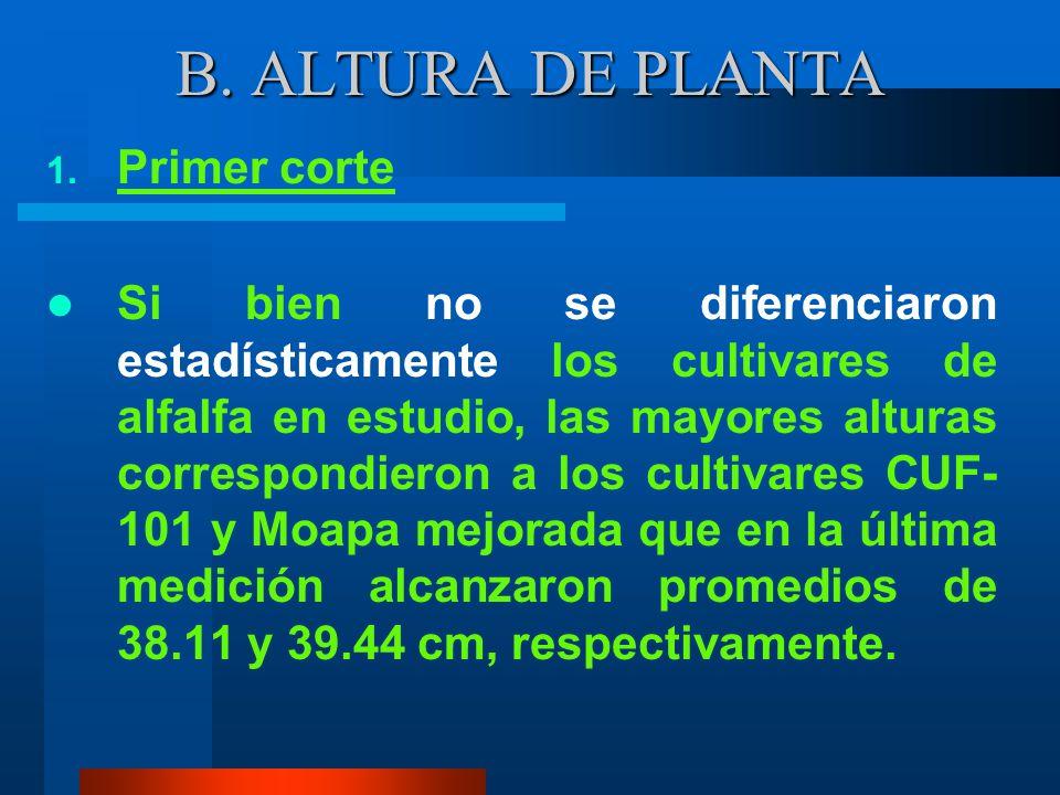B. ALTURA DE PLANTA Primer corte