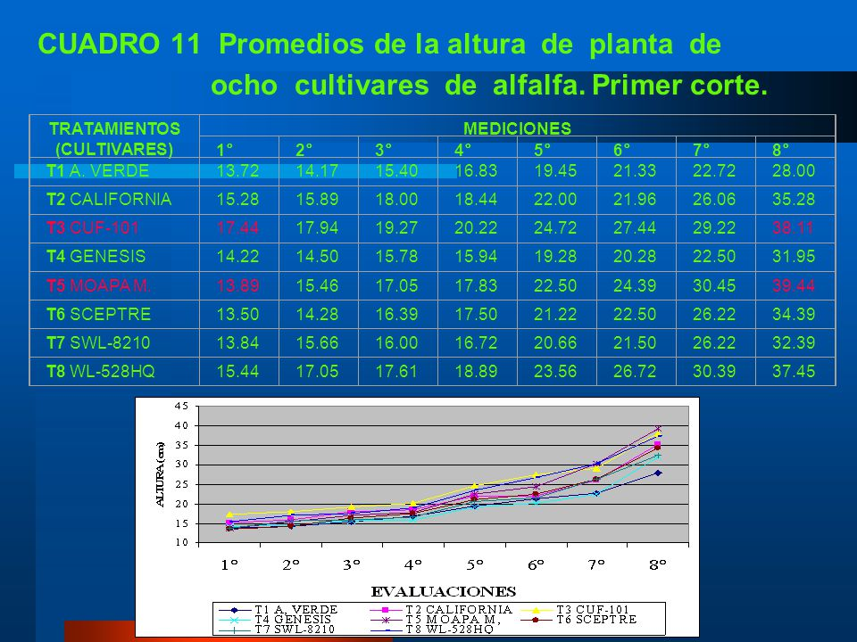CUADRO 11 Promedios de la altura de planta de