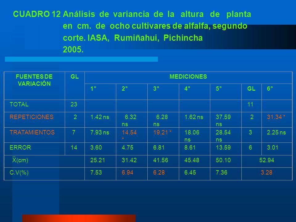 CUADRO 12 Análisis de variancia de la altura de planta