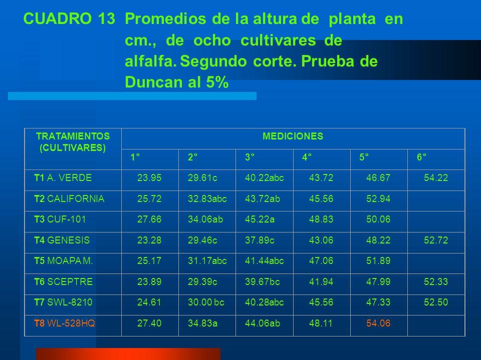 CUADRO 13 Promedios de la altura de planta en