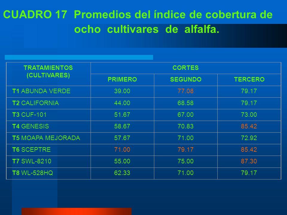CUADRO 17 Promedios del índice de cobertura de
