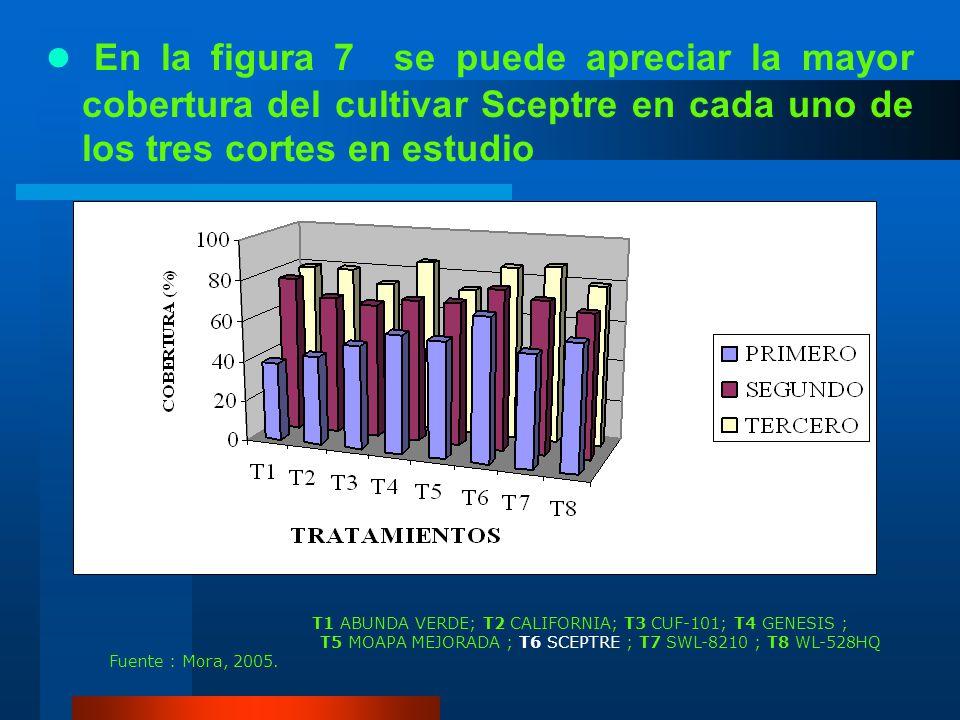 En la figura 7 se puede apreciar la mayor cobertura del cultivar Sceptre en cada uno de los tres cortes en estudio