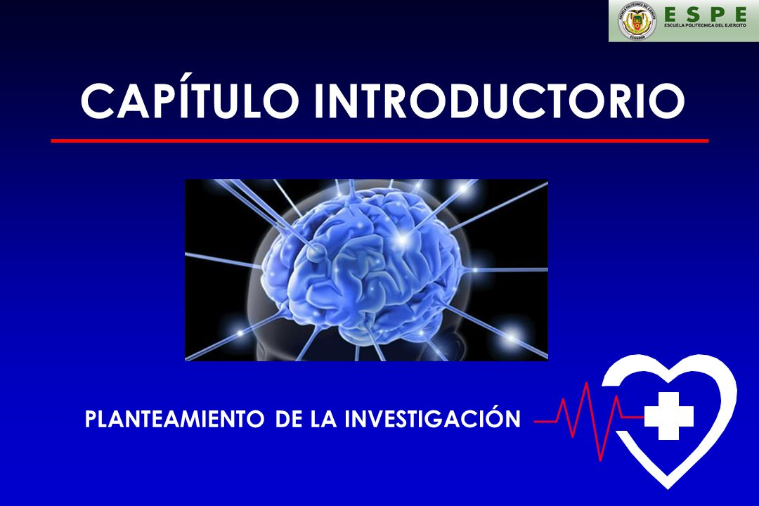 CAPÍTULO INTRODUCTORIO