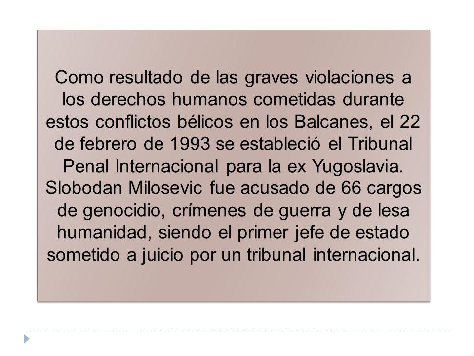 Como resultado de las graves violaciones a los derechos humanos cometidas durante estos conflictos bélicos en los Balcanes, el 22 de febrero de 1993 se estableció el Tribunal Penal Internacional para la ex Yugoslavia.