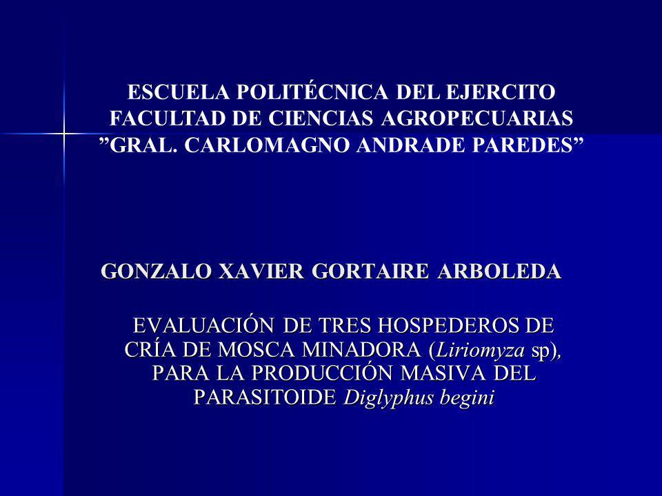 GONZALO XAVIER GORTAIRE ARBOLEDA