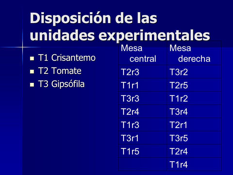 Disposición de las unidades experimentales