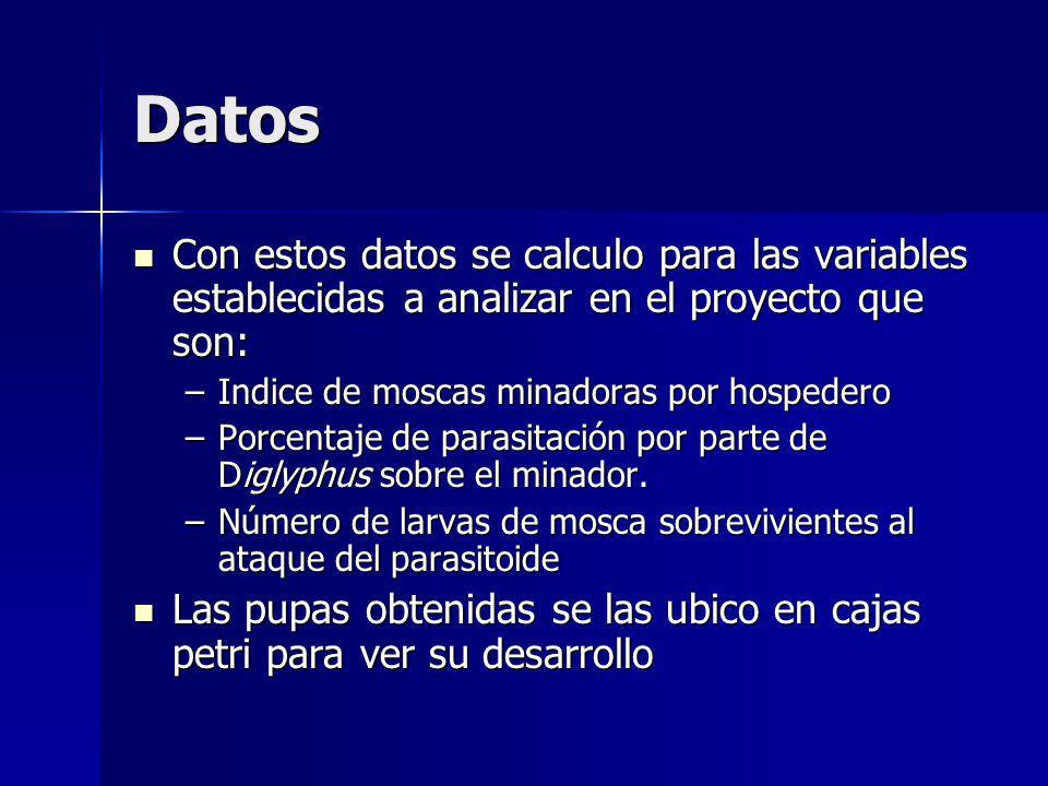 Datos Con estos datos se calculo para las variables establecidas a analizar en el proyecto que son: