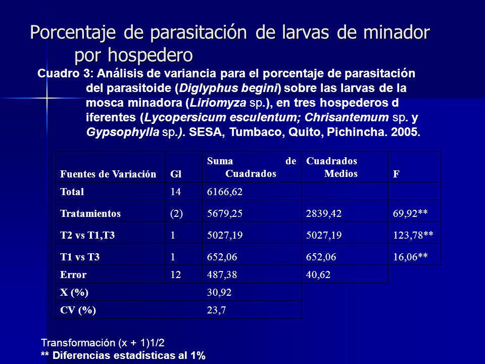 Porcentaje de parasitación de larvas de minador por hospedero