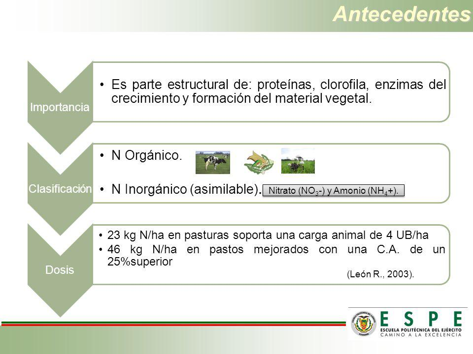 Nitrato (NO3-) y Amonio (NH4+).