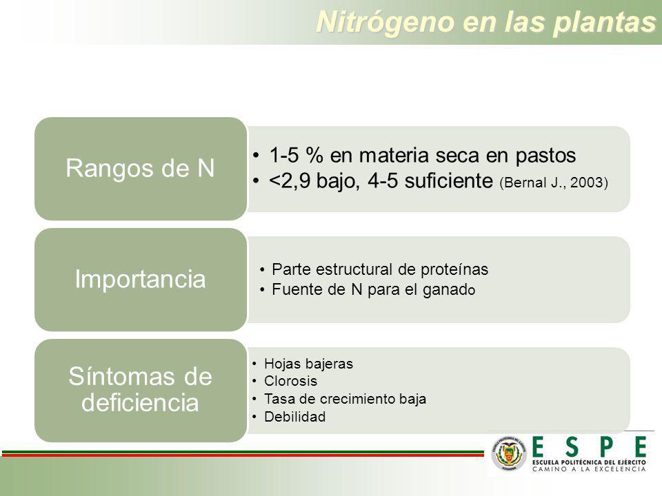 Nitrógeno en las plantas