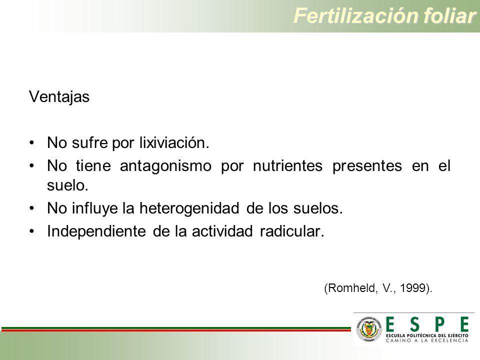 Fertilización foliar Ventajas No sufre por lixiviación.