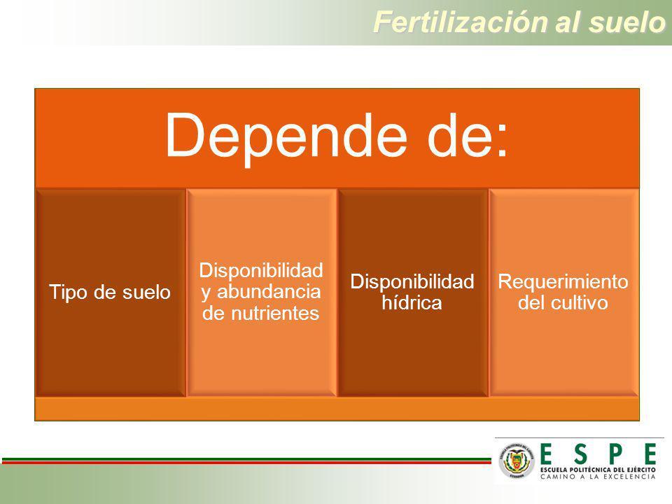 Fertilización al suelo