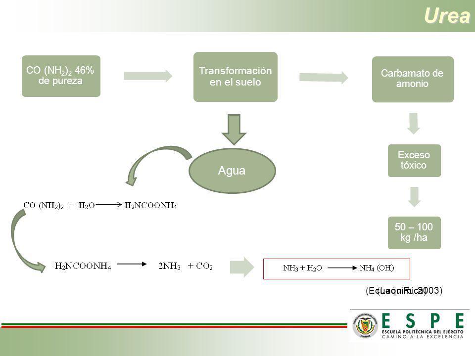 Urea Agua Transformación en el suelo (Ecuaquímica) (León R., 2003)
