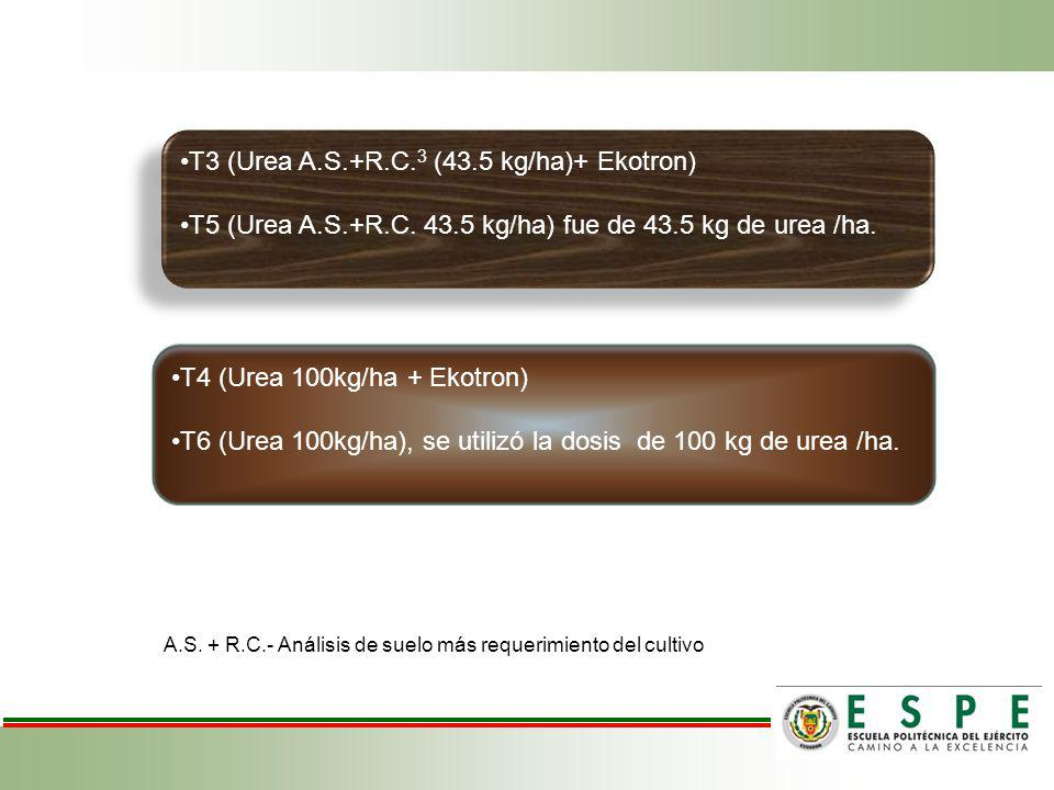 T3 (Urea A.S.+R.C.3 (43.5 kg/ha)+ Ekotron)