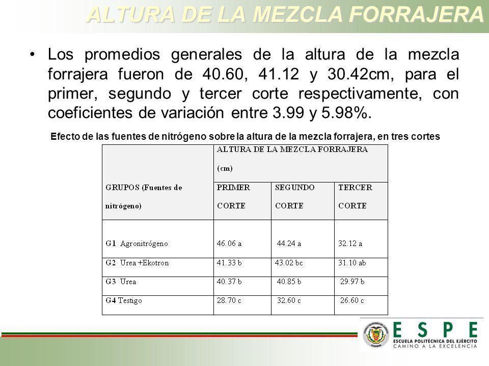 ALTURA DE LA MEZCLA FORRAJERA