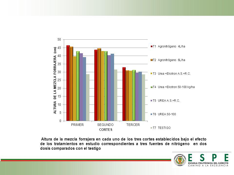 Altura de la mezcla forrajera en cada uno de los tres cortes establecidos bajo el efecto de los tratamientos en estudio correspondientes a tres fuentes de nitrógeno en dos dosis comparados con el testigo