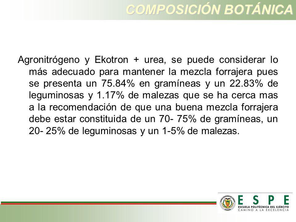 COMPOSICIÓN BOTÁNICA