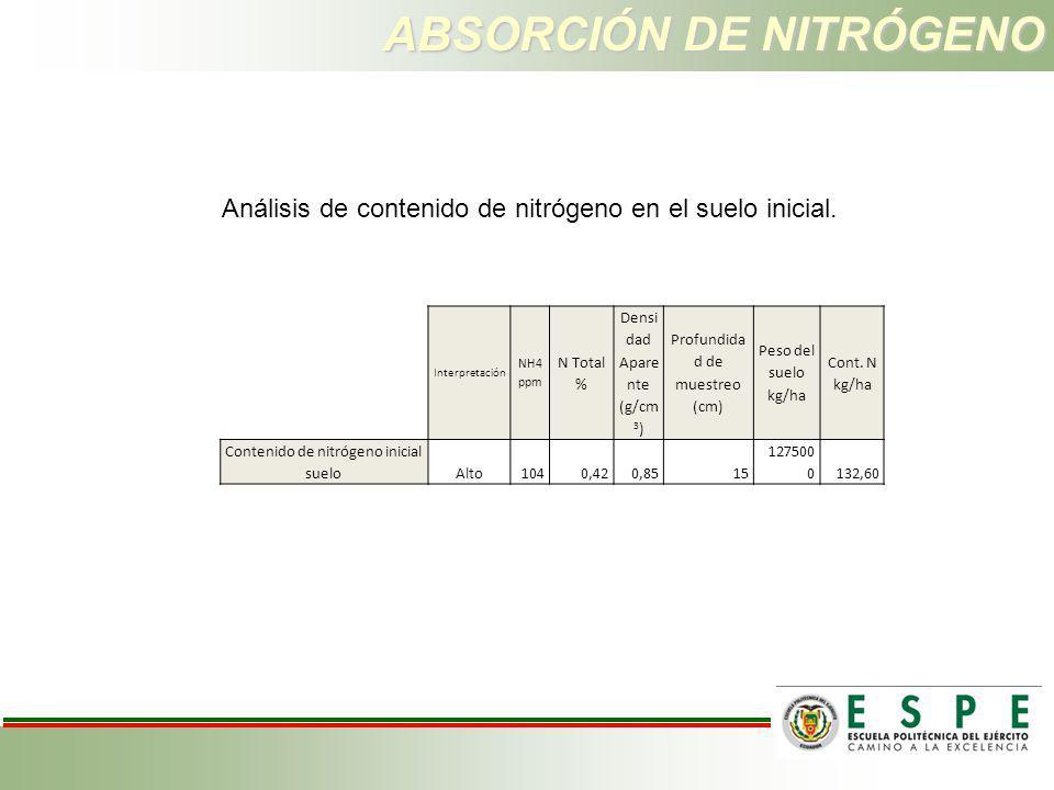 ABSORCIÓN DE NITRÓGENO
